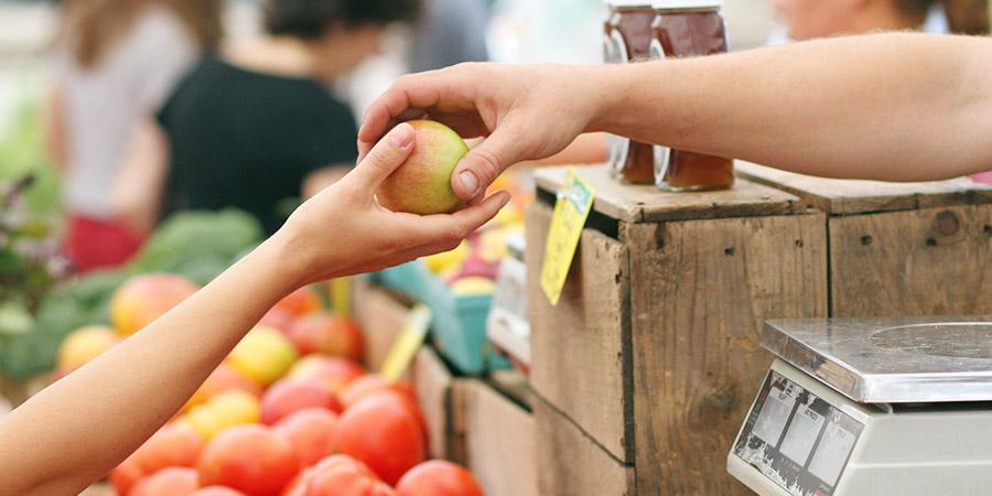 Bild Bauernmarkt Gefrees